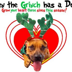 """The """"Even the Grinch Has a Dog"""" Adoption Event!"""
