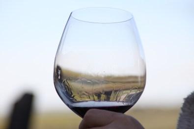 Wine Glass with blur