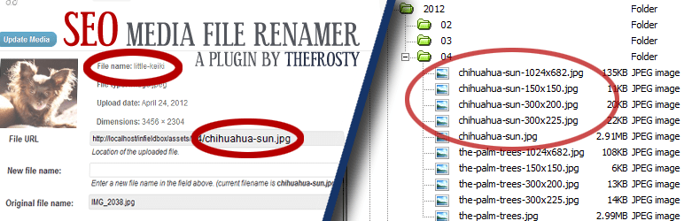 SEO Media File Renamer Banner