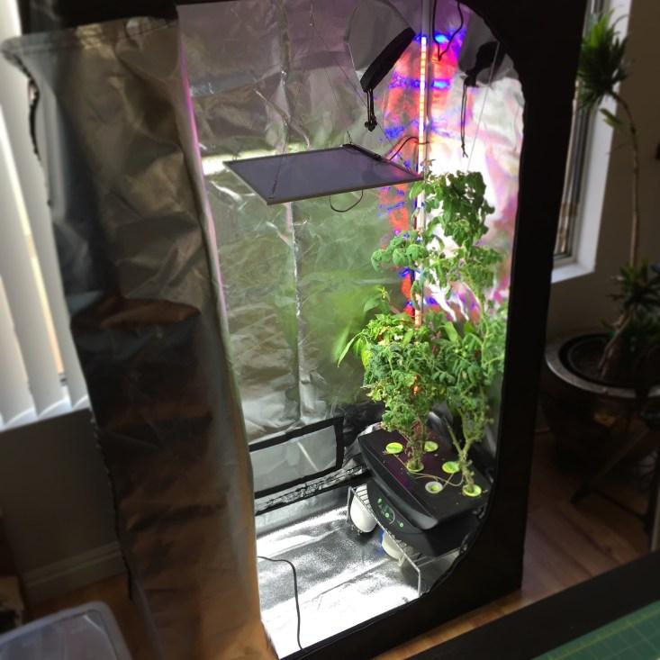 Grow Tent w/ Aerogarden