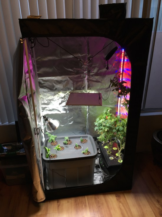 Grow Tent w/ Hydroponic bin & Aerogarden