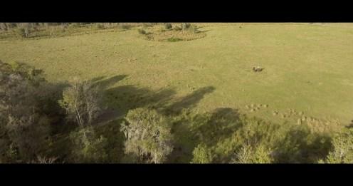 all-drone-clips-00_20_12_18-still002