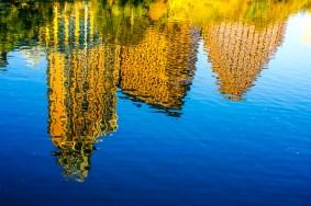 Lake-Austin-Reflections-photo-by-Jann-Alexander-©2010