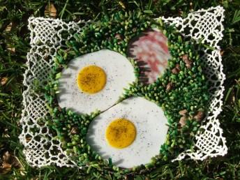 Breakfast on the Grass
