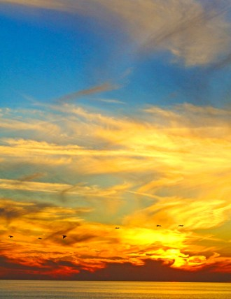 Sunset Pelicans by Jann Alexander ©2013