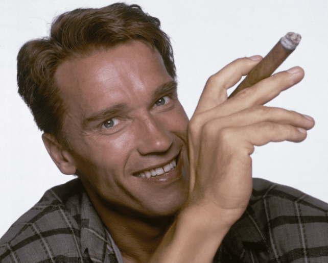 Arnold Schwarzenegger Biography, History, Asset and Net ...
