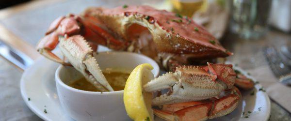 Local Ocean Restaurant Newport Oregon