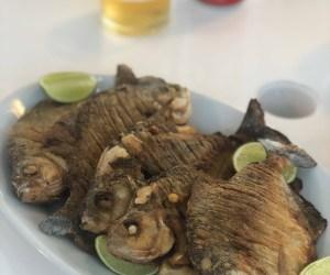 Fried Pirana