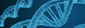 Genomix Nutrition Testing
