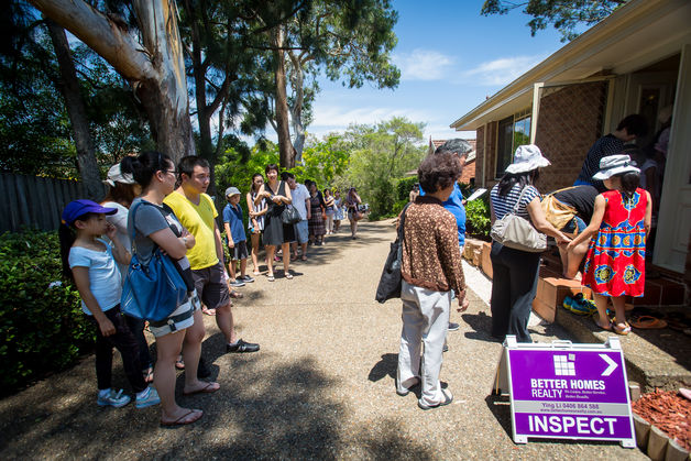 Chinese queues for Sydney housing