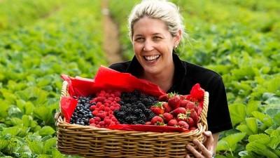 Nanna's Local Berry Lie