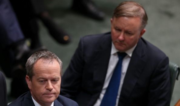 Anthony Albanese backs Bill Shorten for seconds