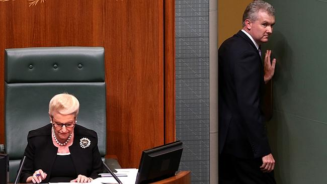 Tony Burke abusing privileges