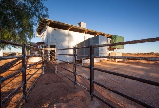 Curtin Springs Paper - Old Abattoir  (1)