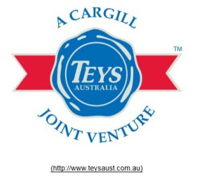 Teys Logo_edited-1