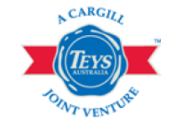 Teys logo 15.09.2017