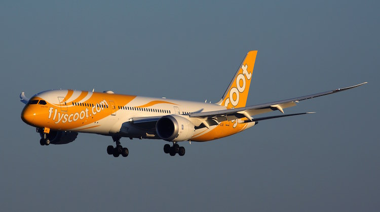 A file image of a Scoot Boeing 787-9. (Rob Finlayson)