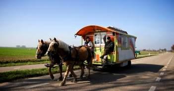 horse drawn caravan