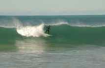 Cactus Beach
