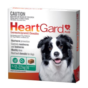 Heartgard Plus Medium 6 Pack