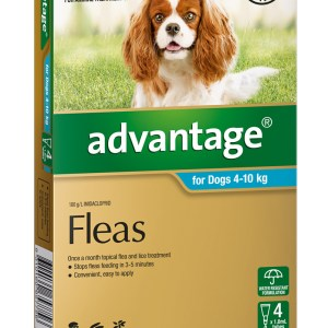 Advantage Medium Dog