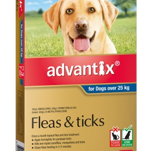 Advantix XLarge Dog