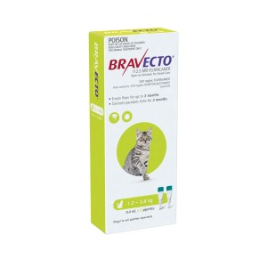 bravecto small cat