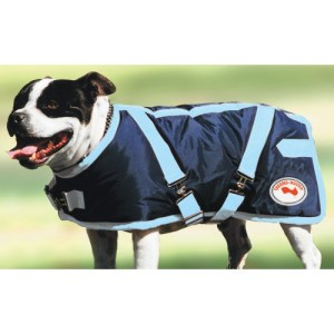 Thermo Master Dog Coat Navy and Baby Blue