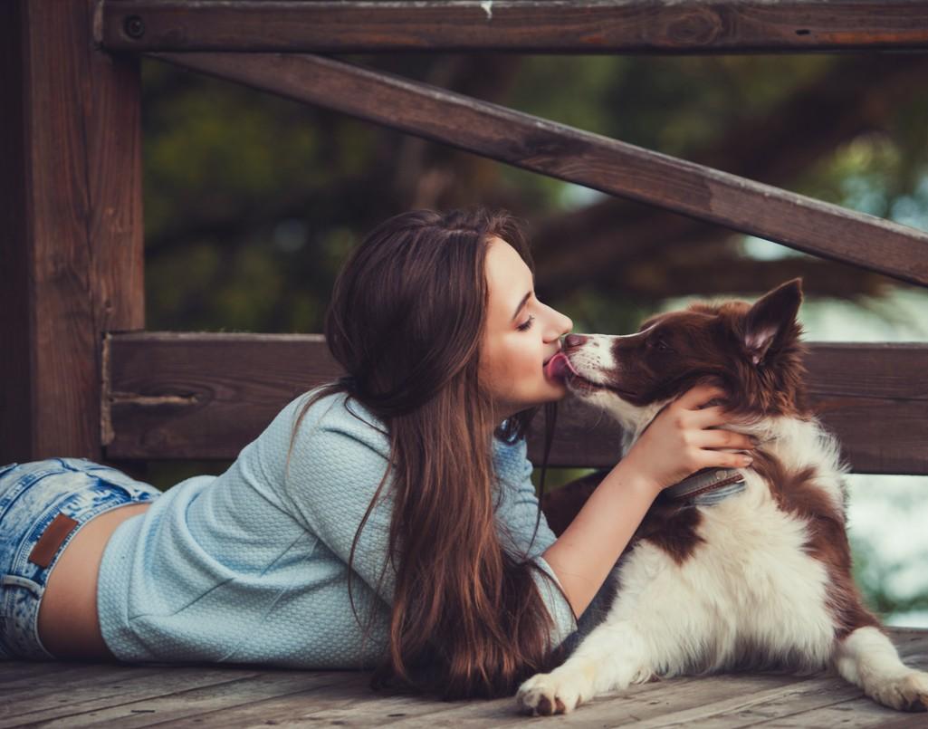 dog licking woman getting pet supplies online