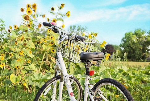 bicycle-compressed_102316