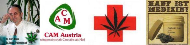 Cannabis das wiederendteckte Medikament