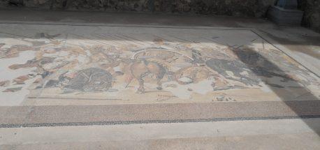 Mosaic Floor in a Villa in Pompeii