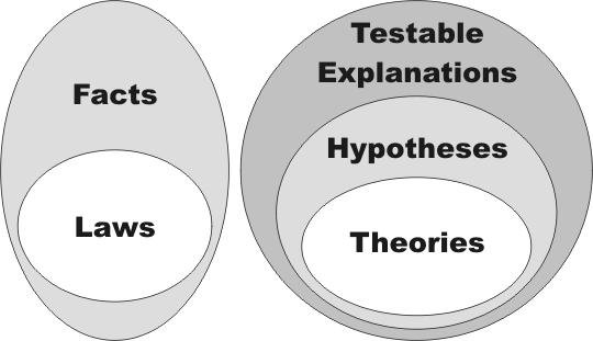 venn diagram theory law 101