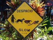 Costa Rica Road Sign