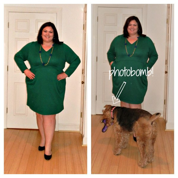 Lands End Plus Size Ponte Dress from Gwynnie Bee