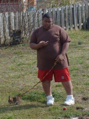 bunny-walk