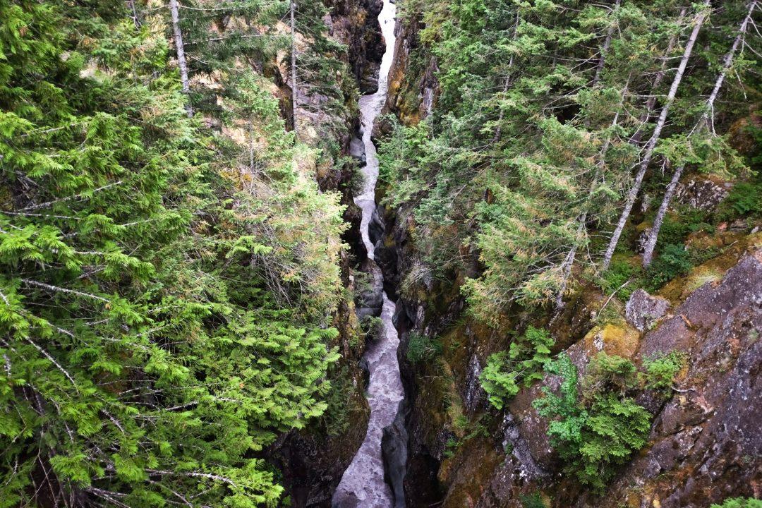 A river through Mount Rainier National Park