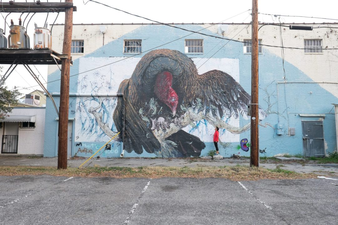 Favorite street art and Instagram spot in Charleston, South Carolina