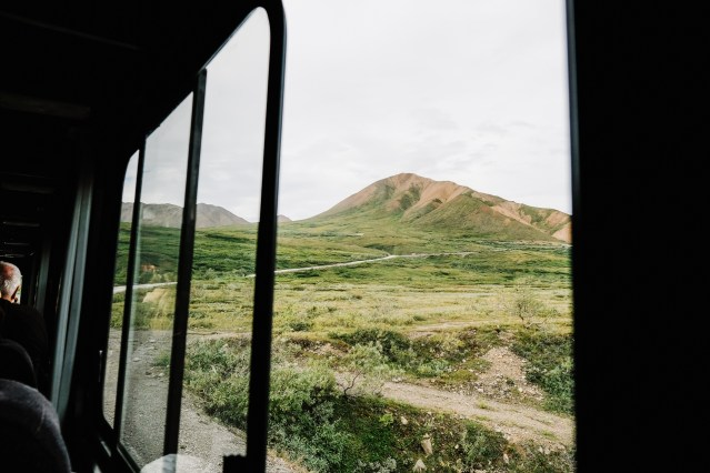 view out the bus window on the Tundra Wilderness tour in Denali National park