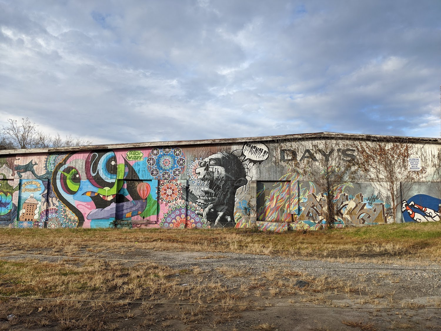 photograph of some of the best murals in Asheville, North Carolina