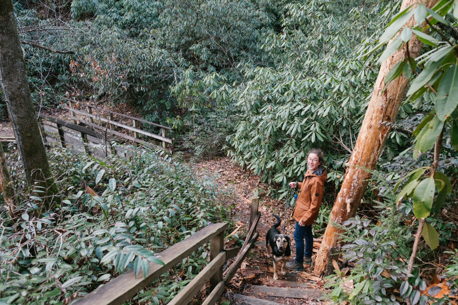Caroline Whatley in Pisgah National Forest walking a black dog with a leash, surrounded by rhododendrons.