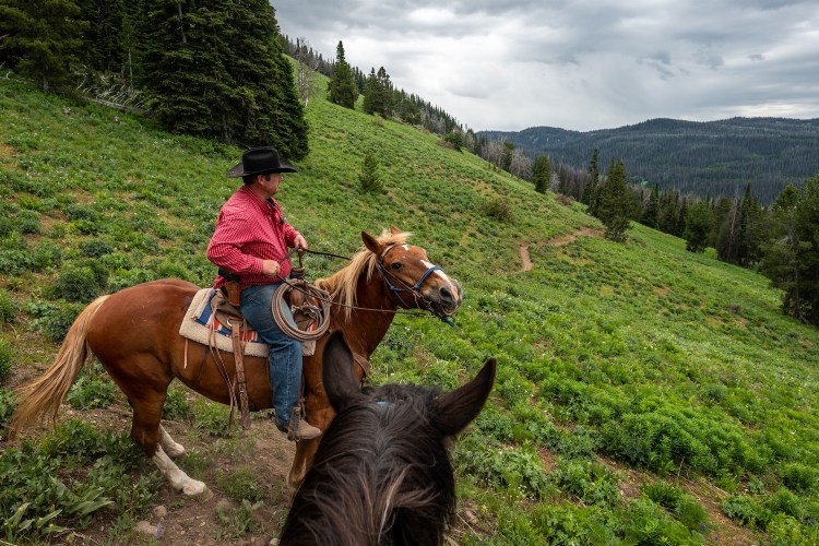The lead wrangler on our guided horseback trip is in a red shirt and black cowboy hat. He has stopped to allow the group to take a few photos on Angle Mountain. The black head of the horse the photographer is on is in the foreground.