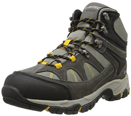 Hi-Tec Men's Altitude Lite I WP Hiking Boot, Charcoal/Warm Grey/Gold,10.5 W US