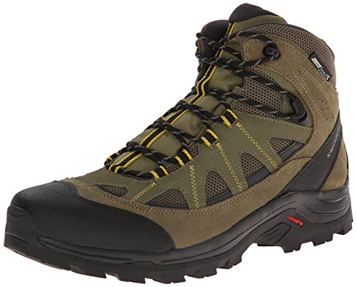 Salomon Men's Authentic LTR CS WP Hiking Boot High Top, Iguana Green/Asphalt/Ray, 10 M US