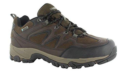 Hi-Tec Men's Altitude Trek Low I WP Hiking Boot,Dark Chocolate,13 M US