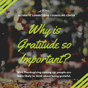 """Image of a flyer reading """"why is gratitude so important?"""" You can get in touch with gratitude by working with a Castle Rock therapist. 80104 
