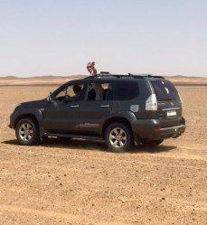 Morocco tours & Trips