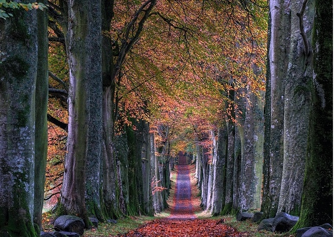 Authentic Living is a Journey not a destination.