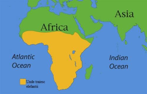 harta-elefant-african