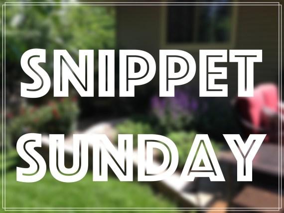 Snippet Sunday